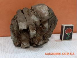 Камінь Карпатський №6 (Україна)