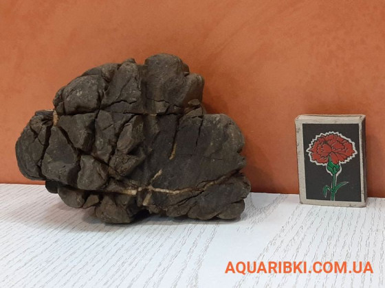 Камінь Карпатський №9 (Україна)